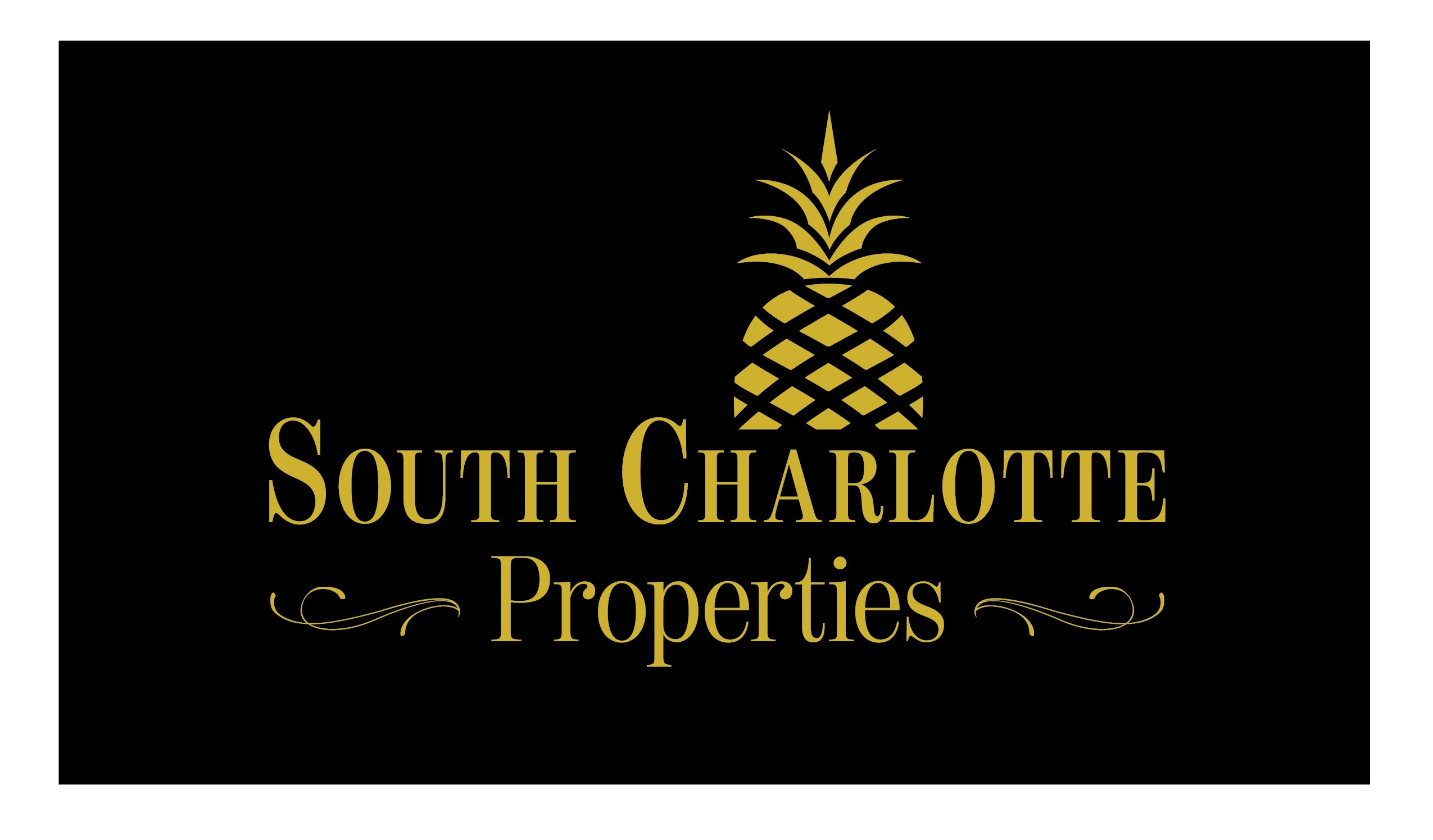 South Charlotte Properties